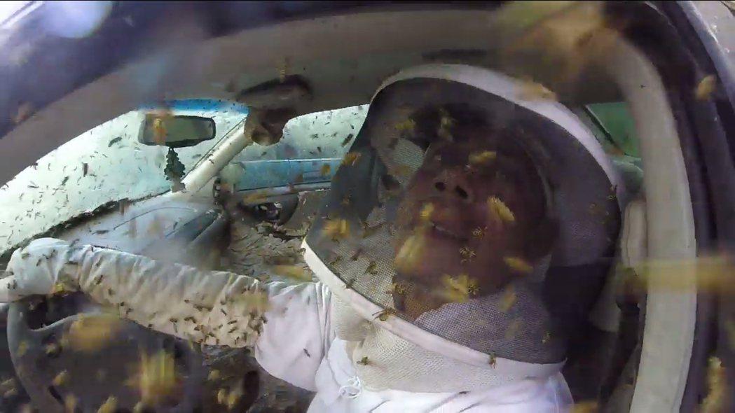 除蟲專家維瑞特穿起專業保護裝備展開除蟲,並玩心大發,找來同行友人,座上這輛黃蜂巢...