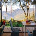 大山就在腳下!新竹「宮崎駿系」秘境咖啡館,享受森林包圍還能賞雲海