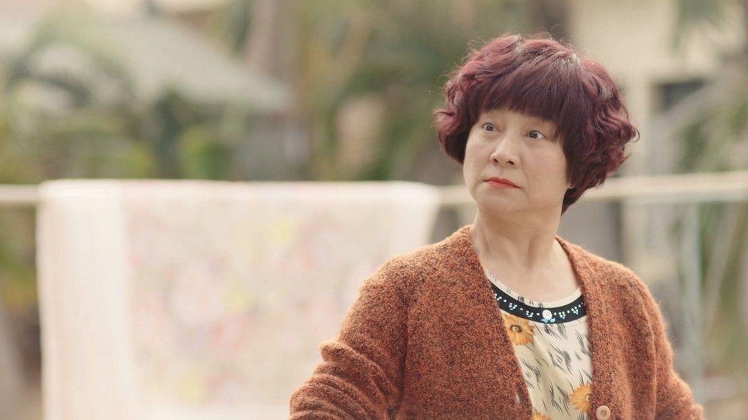 楊麗音在「俗女養成記」中飾演女主角的阿嬤。圖/華視提供