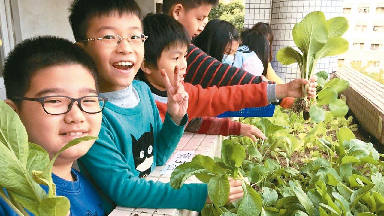 台中市部分國小家政課結合食農教育,豐富教育意涵。 圖/台中教育局提供