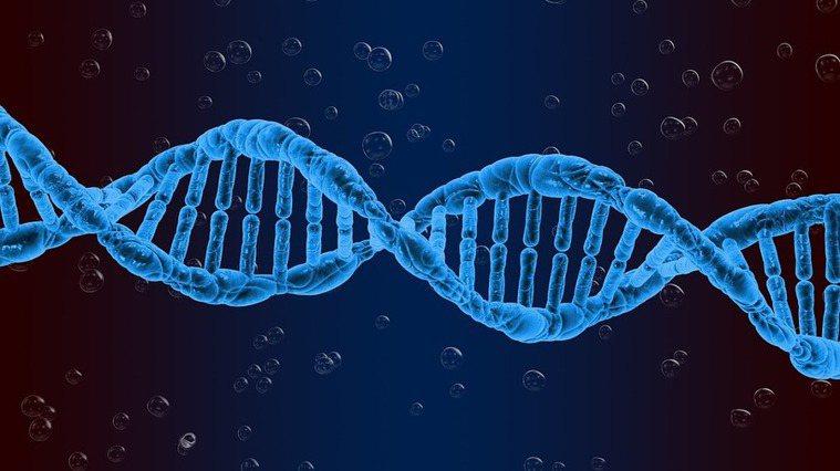 最新研究發現,與生理時鐘有關的基因日約節律,跟思覺失調症息息相關。(photo ...
