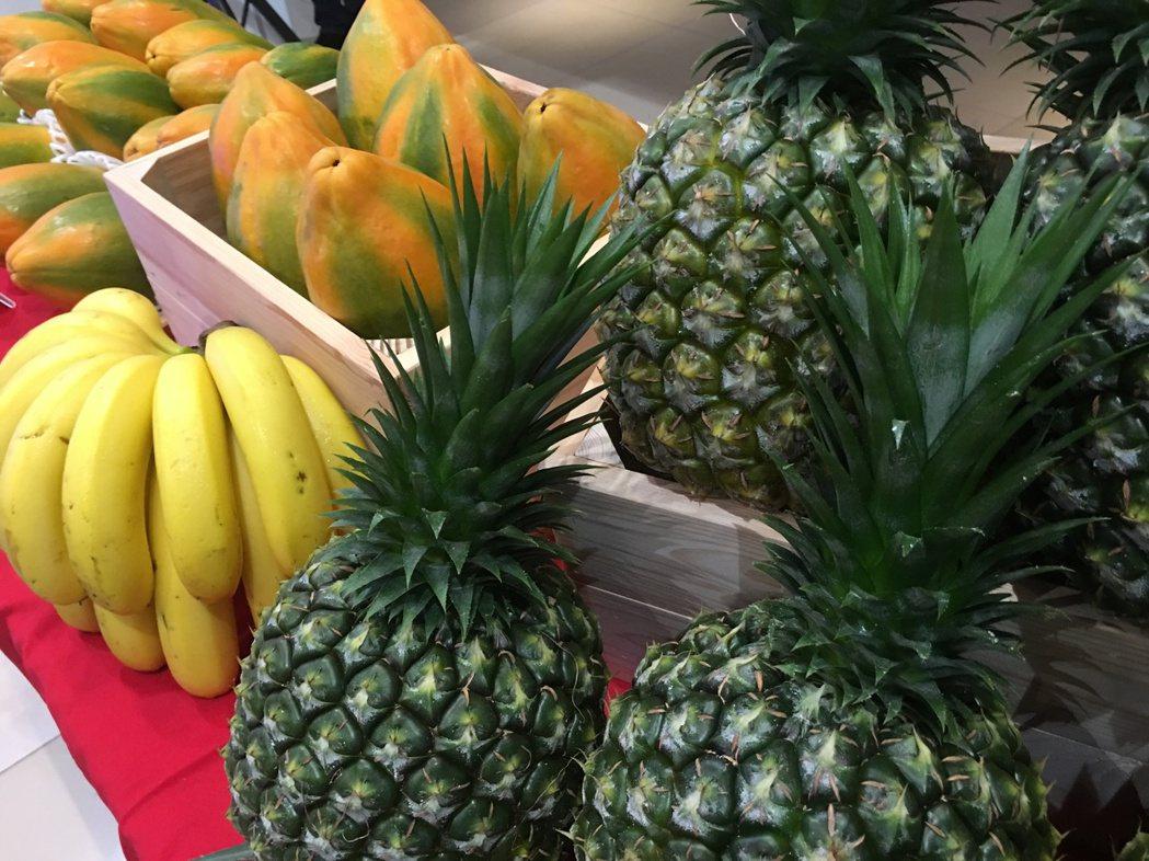香蕉、鳳梨等後熟水果,摘採下來常溫熟成,不適合存放冰箱。圖/報系資料照