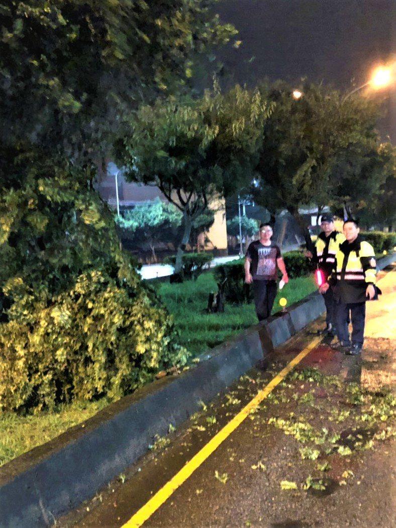 台中市區連日降雨,烏日警方協把把一棵路樹搬離道路。圖/烏日警分局提供
