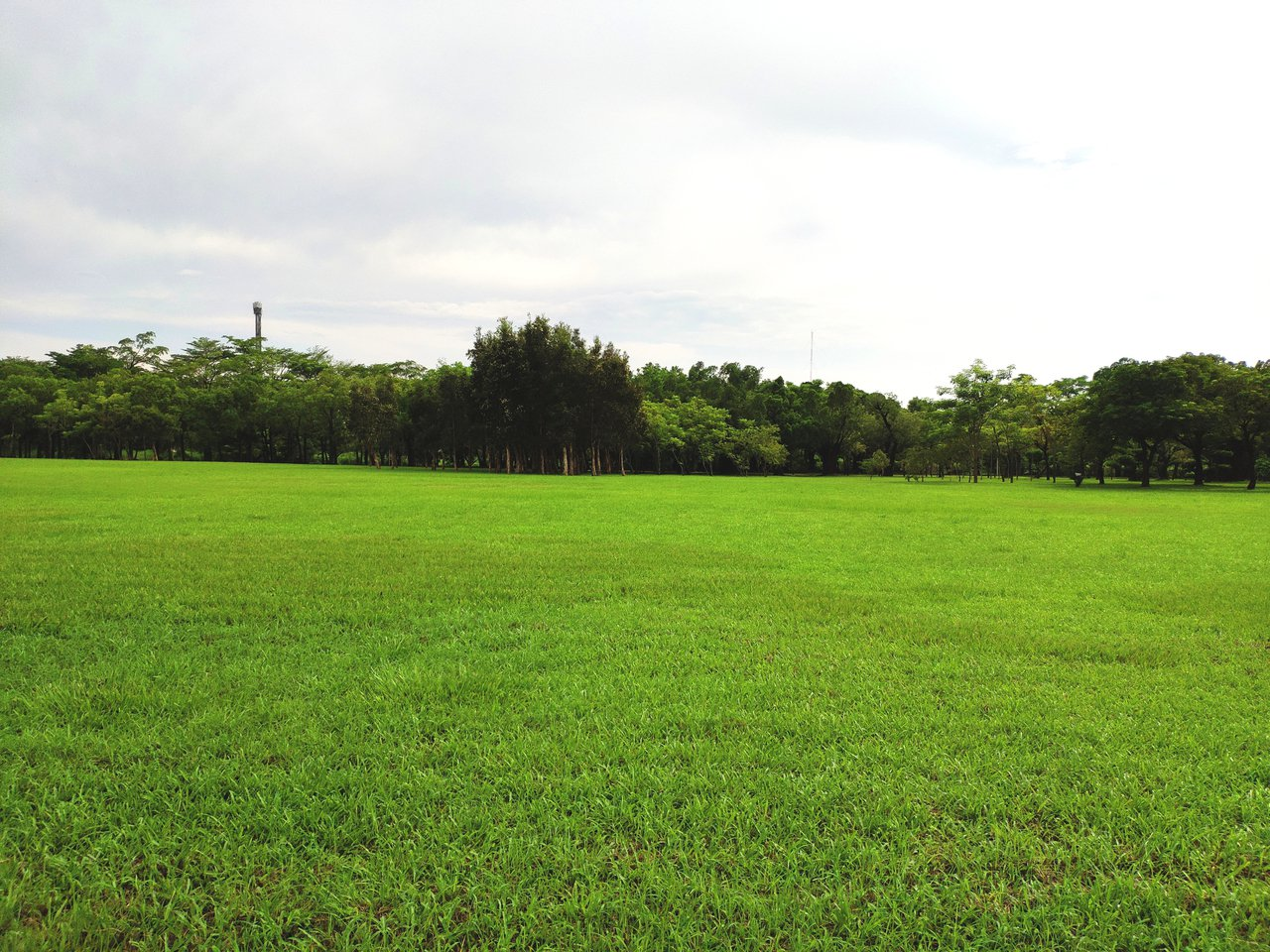 雨過天晴,台南揮別上半天暴雨,下午已陽光露臉。記者謝進盛/攝影