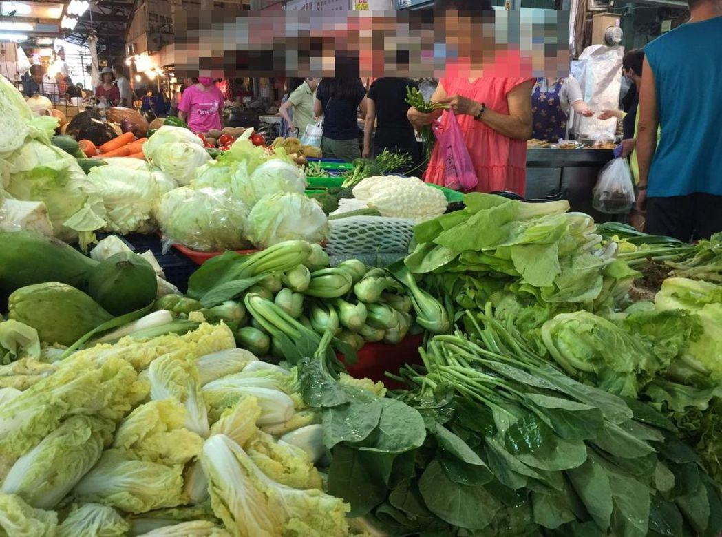 綠色蔬菜。記者楊濡嘉/攝影