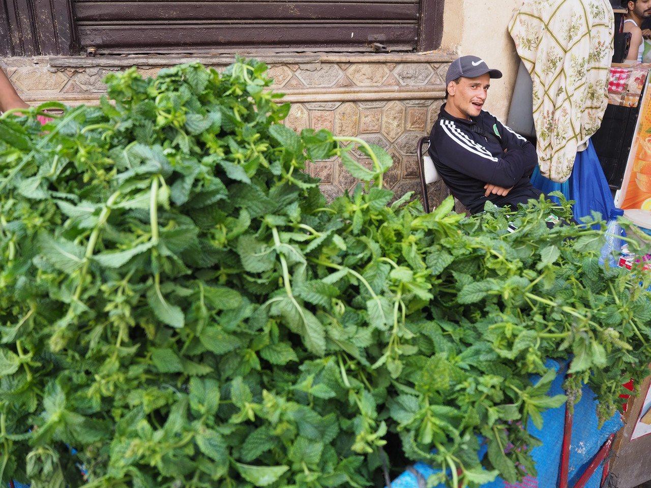 薄荷葉是各城都可見的尋常物,薄荷茶每日必飲。記者羅建怡/攝影