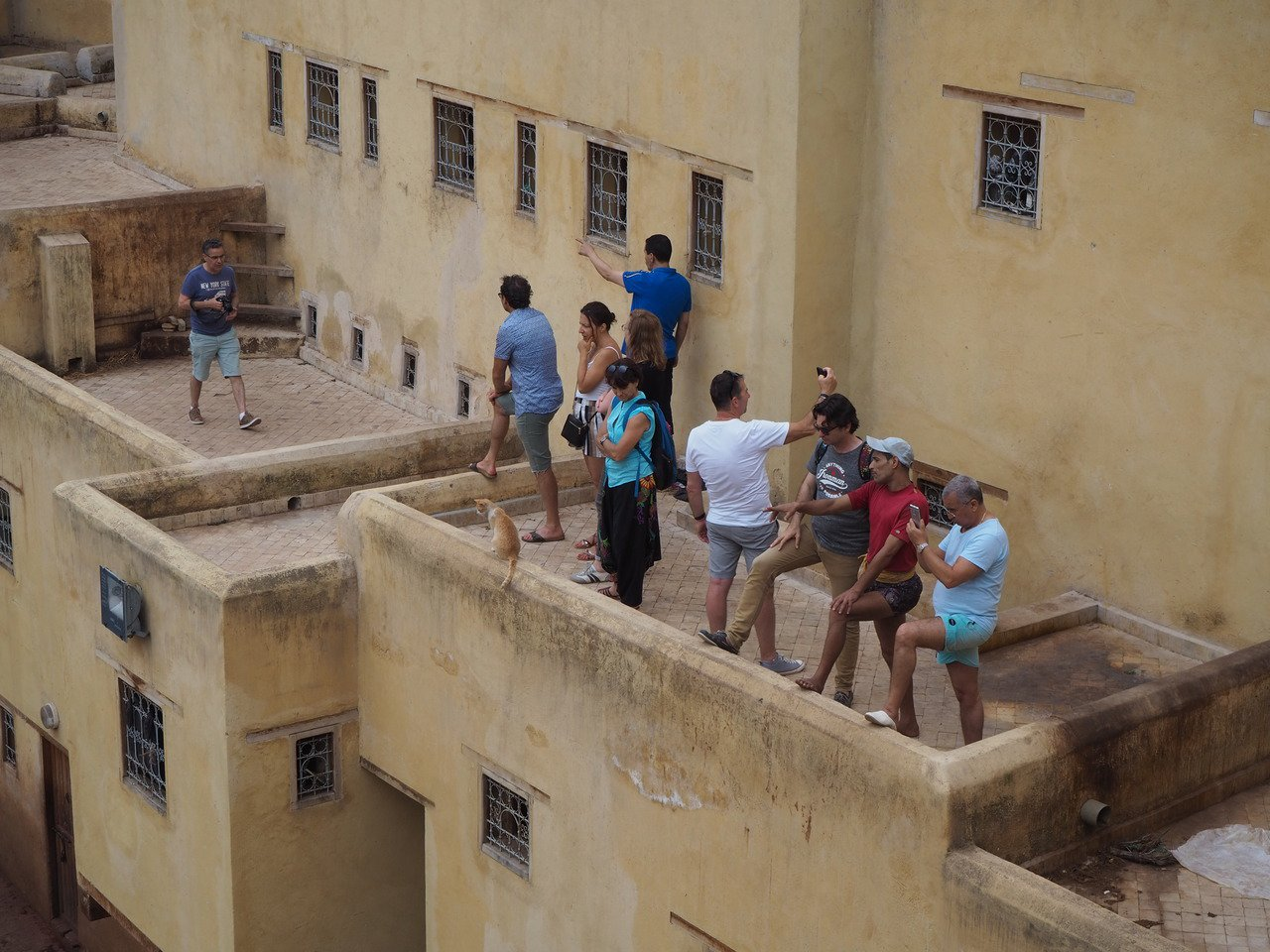 各家皮革廠開放騎樓供遊客拍照。記者羅建怡/攝影