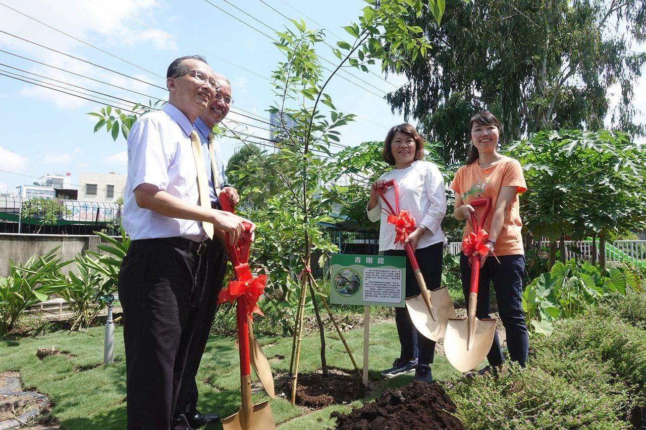 橡木子非營利幼兒園今天揭牌,市長黃敏惠與校方種下種子。記者李承穎/攝影