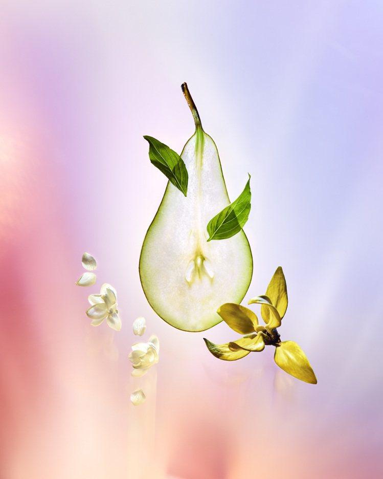Coeur Battant以西洋梨、麝葵籽、埃及茉莉等作為香氣結構。圖/LV提供