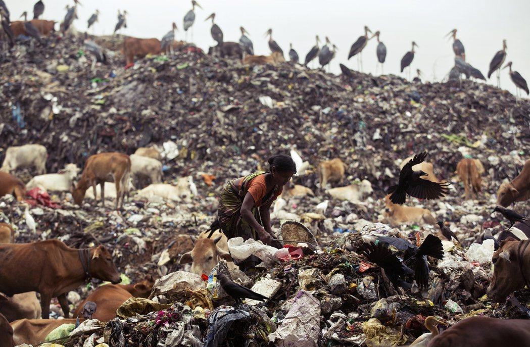 為強調自己的「發展中」地位,中國、印度等國聯袂向WTO提交報告。報告裡引述許多數...