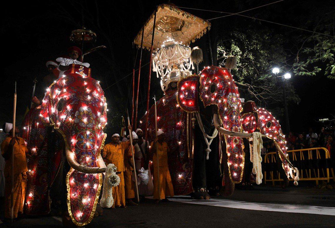 18世紀中,斯里蘭卡國王為了讓國人感受佛牙的神聖,下令讓佛教「聖獸」大象駝著裝有...