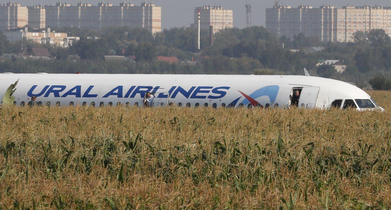 俄國烏拉爾航空載有233名乘客的飛機起飛後不久遭鳥擊,緊急迫降在莫斯科附近玉米田...