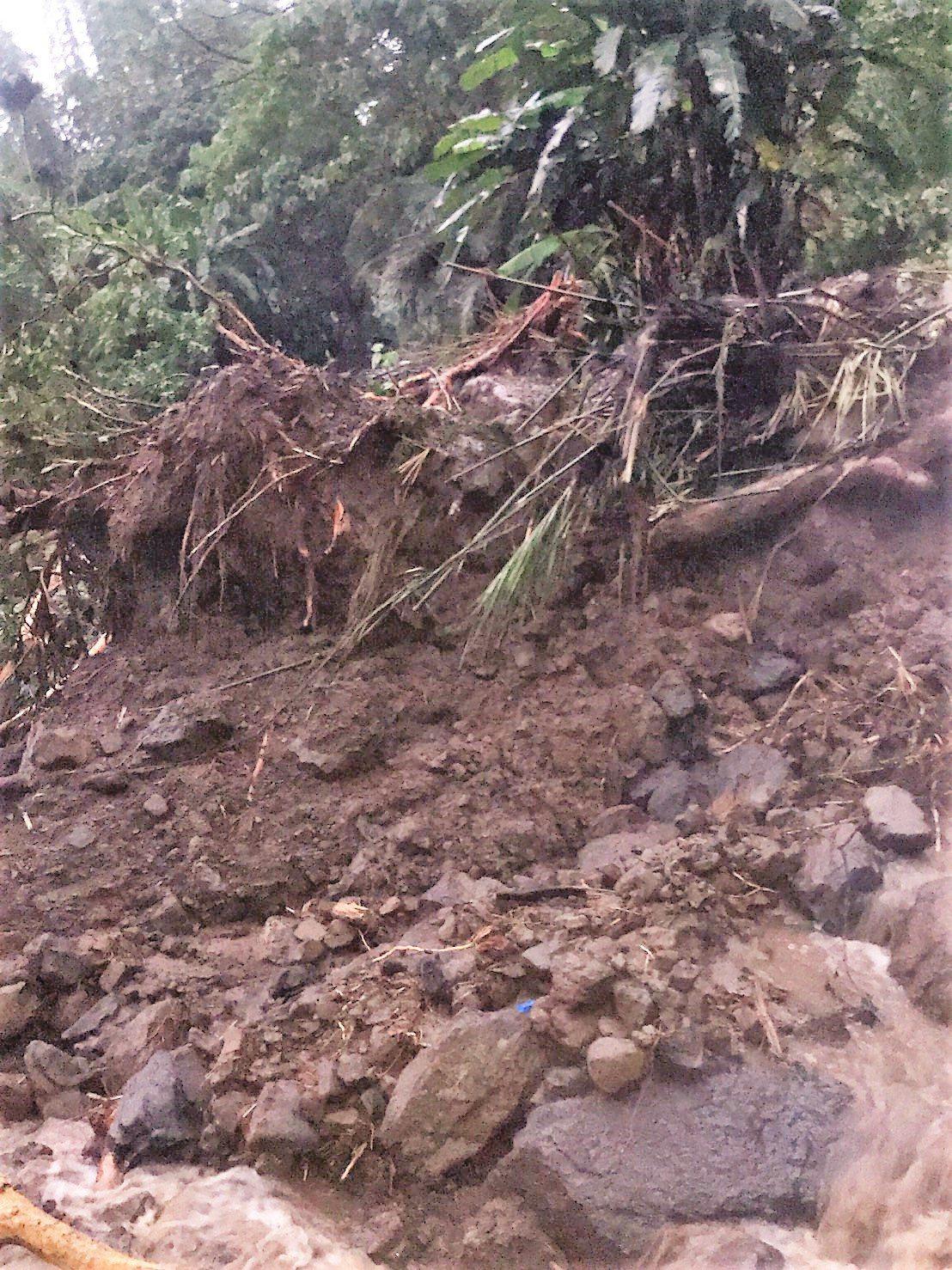 阿里山林鐵員工今天巡視發現,地震土石滑落、軌道損壞,阿里山林鐵將停駛4天。圖/林...
