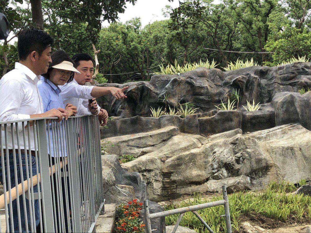 蔡英文總統今天參訪新竹市立動物園改造工程及體驗動物園夏日遊環境教育工程。記者王駿...