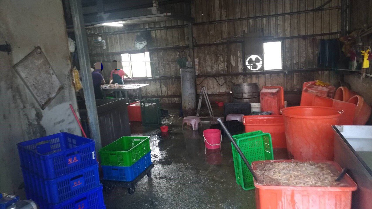 台中市梧棲區一家食品加工廠,日前將家禽腸子等內臟清洗後,廢水未經處理就排入工廠旁...
