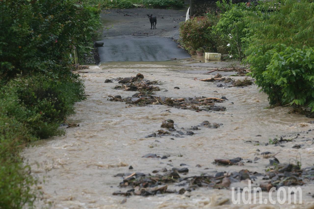 高雄山區連夜豪雨不斷,六龜區扇平山莊等地道路受損嚴重,滾滾的土石流伴著大量黃色濁...