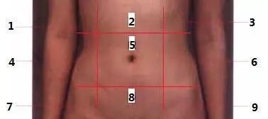 圖片引用於:腹部疼痛學,錢寒山著,北京:中國科學技術出版社1990.03