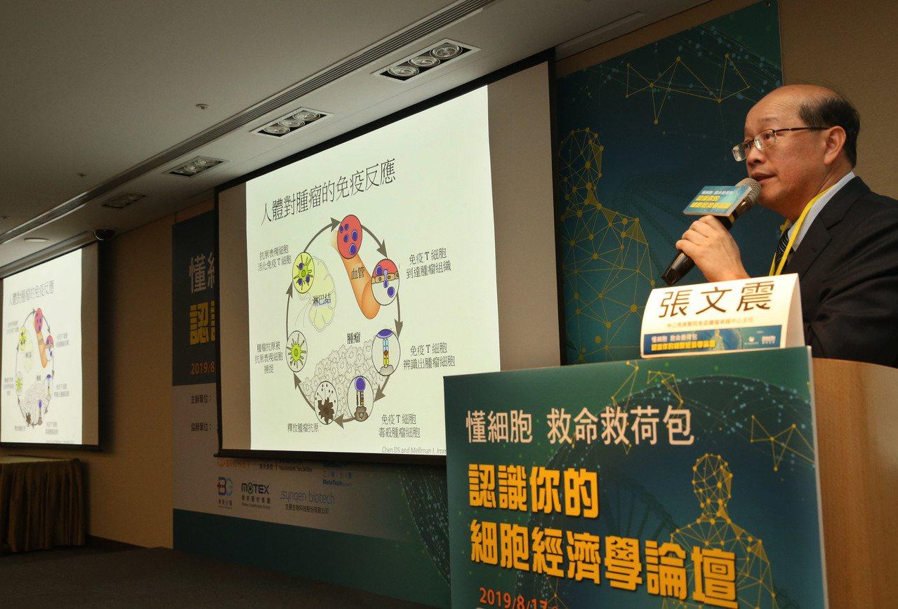 面對最夯的自體免疫細胞治療,林口長庚免疫腫瘤學卓越中心主任張文震說,免疫治療其實...