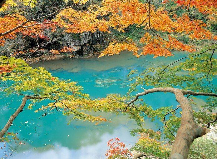 嚴美溪擁有「日本第一美溪」之譽,是秋天的絕佳賞楓之處。圖/日本王子大飯店提供