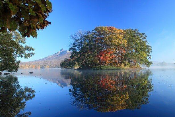 「大沼國定公園」遼闊的秋景配上湖光山色,令人心曠神怡。圖/日本王子大飯店提供