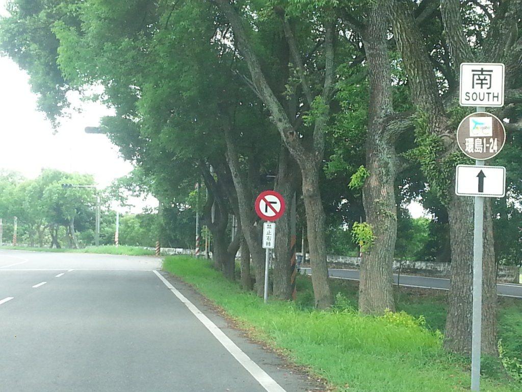 雲林古坑鄉綠色隧道往永光村的台三線南端有新、舊路段之分,該路段交叉處常有事故發生...