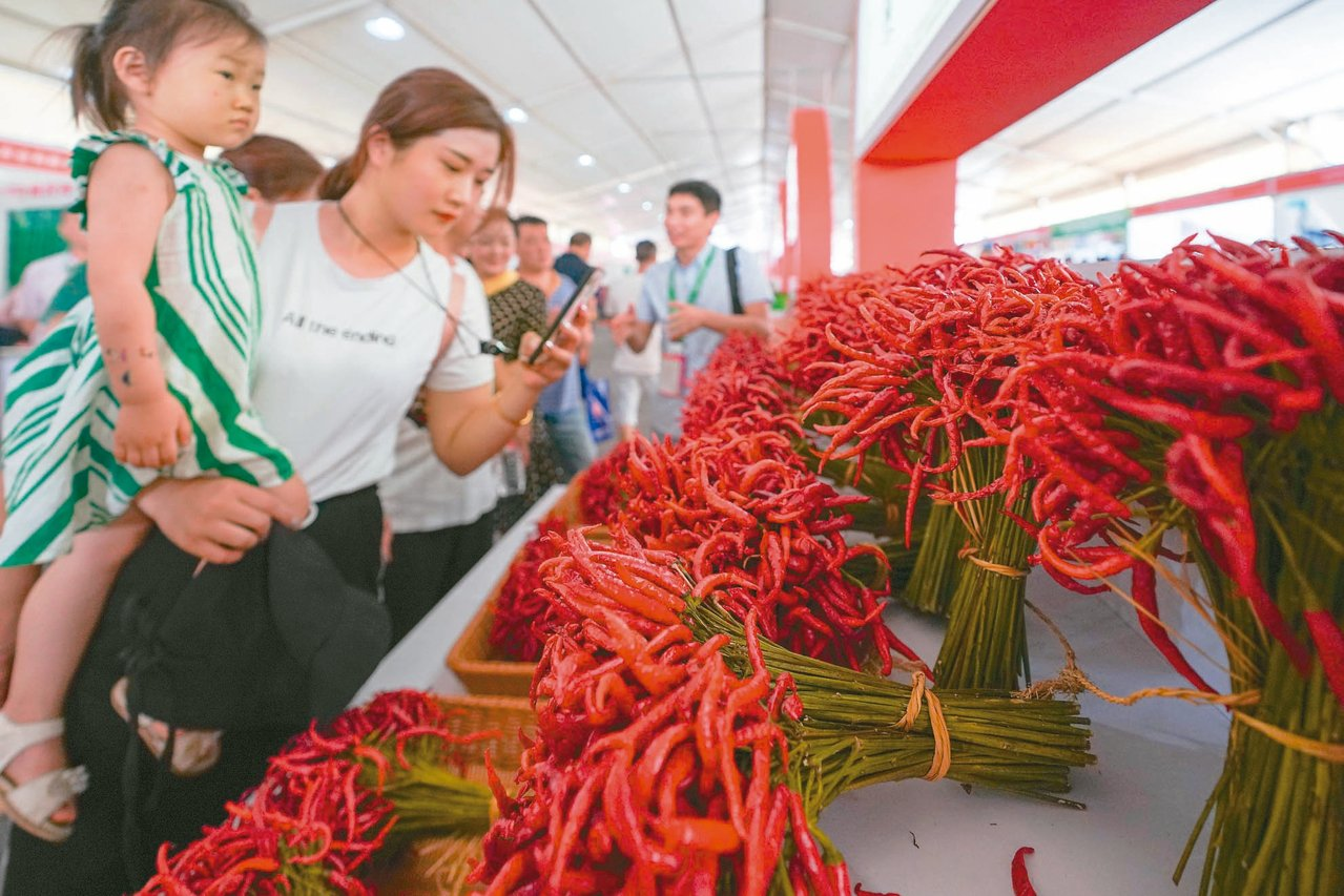 遵義國際辣椒博覽會17日開幕,現場展出的辣椒吸引觀眾。 中新社