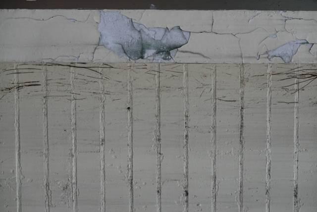 華光機構最早成立的華光智能發展中心邁入35年,房舍老舊、牆壁龜裂且漏水,亟需修繕...