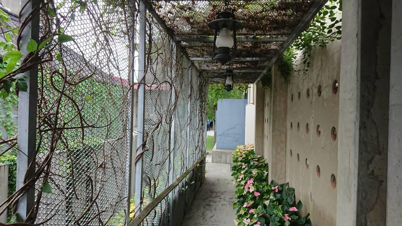 嘉義縣中埔鄉農會金蘭分部倉庫,其中一間打造成「最美農會營業廳」,外觀也做綠美化。...