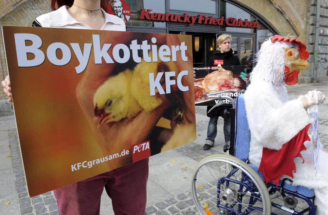 動保團體「善待動物組織」(PETA) 過去也曾針對肯德基的「虐雞養殖場」發起強烈...