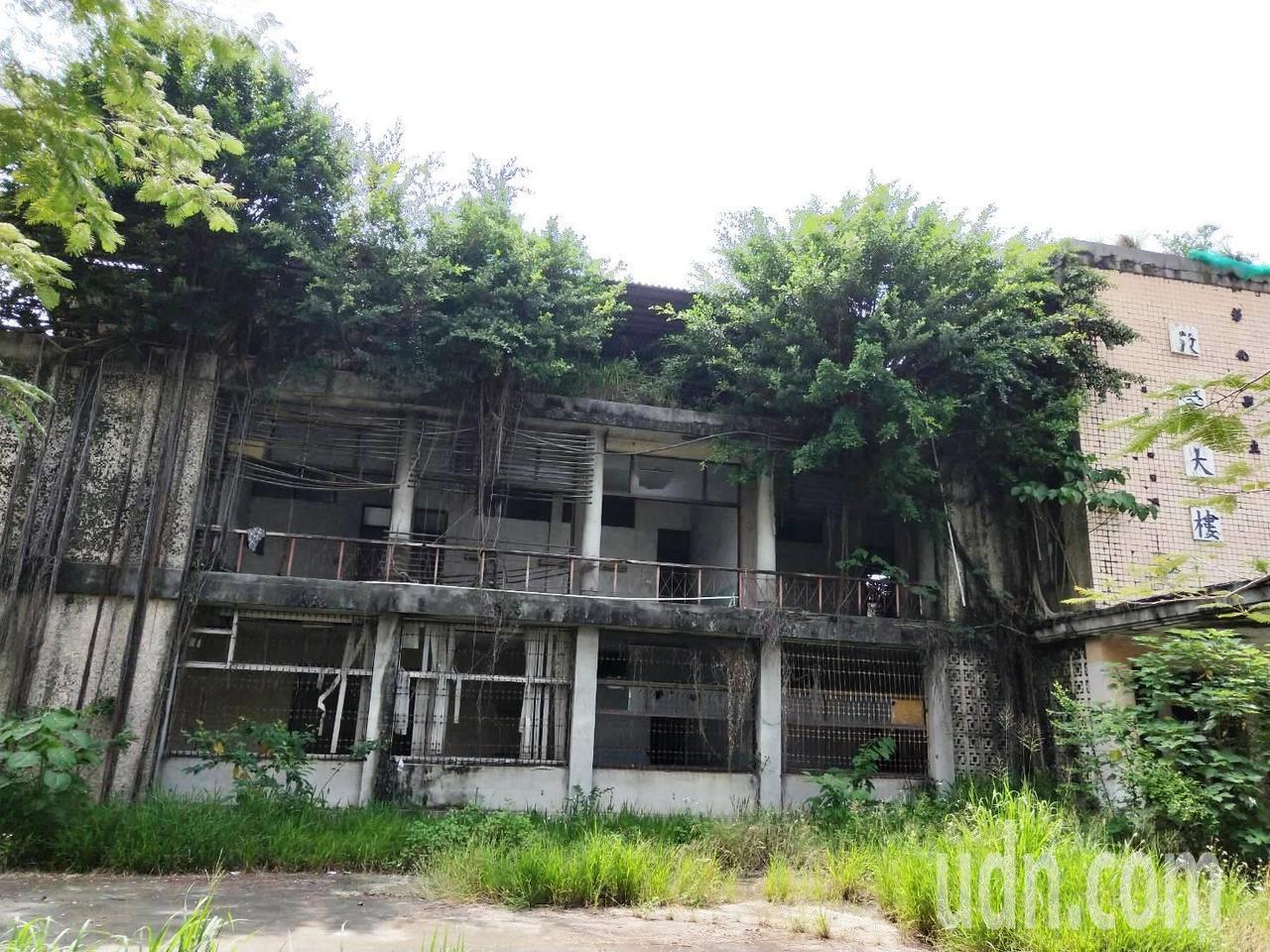 彰化縣立員林醫院閒置20多年,外牆長出3株榕樹,氣根盤據牆壁。聯合報系資料照片