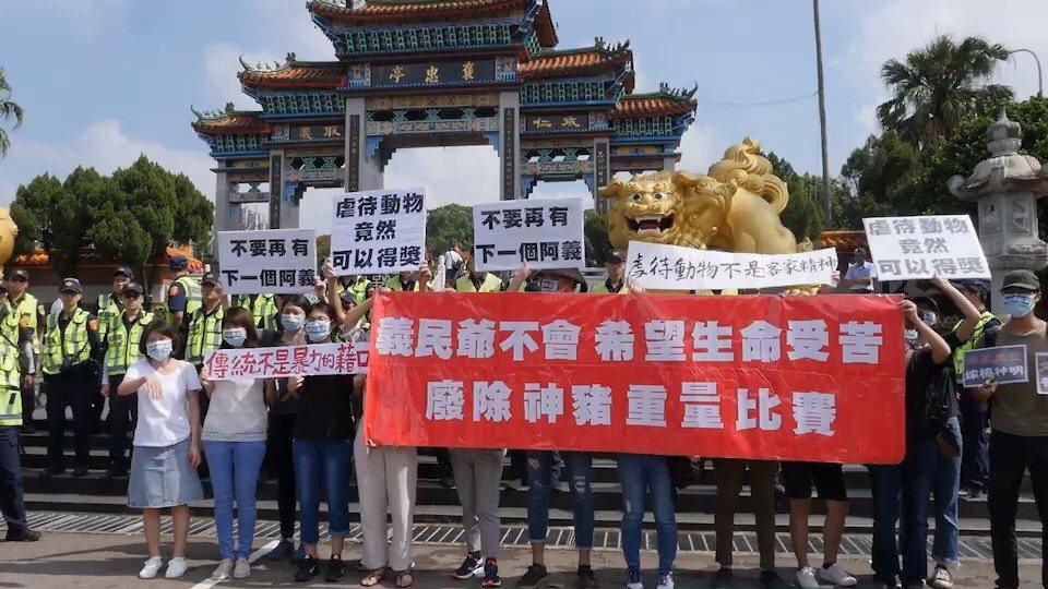 這是第17年針對台灣少數廟宇舉辦神豬重量比賽,表達抗議。記者郭政芬/攝影