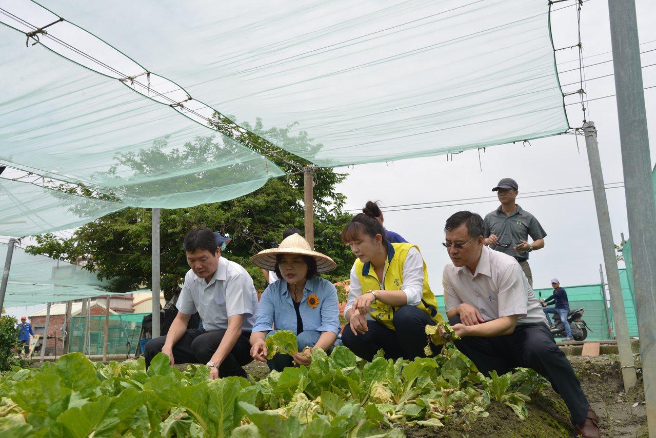 縣長張麗善(左二)等人今天到二崙鄉勘災。記者李京昇/攝影