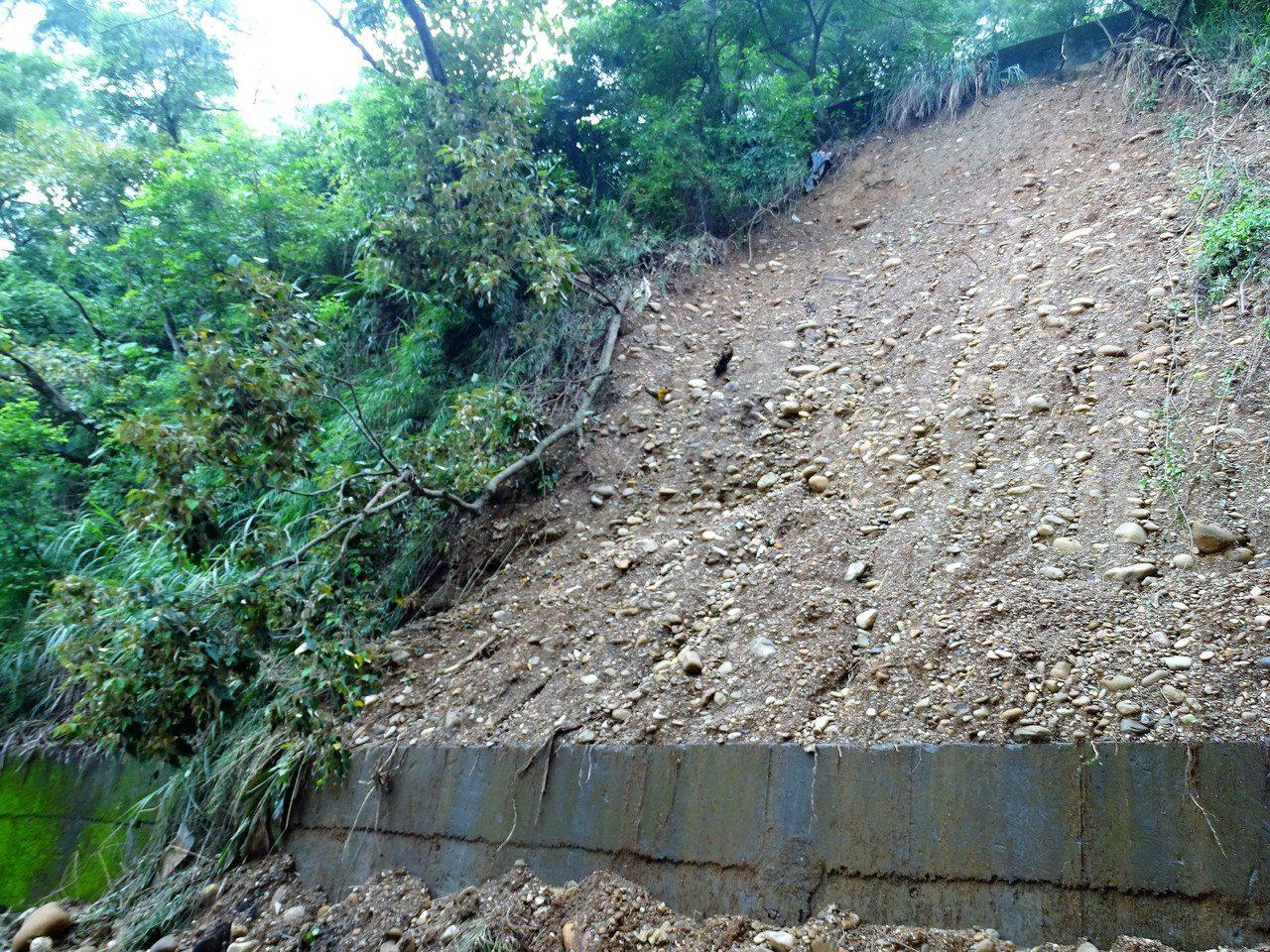 彰化縣二水鄉豐柏路有多處坍方過的路段,山壁上的樹木和雜草都已經滑落,只見鬆軟的砂...