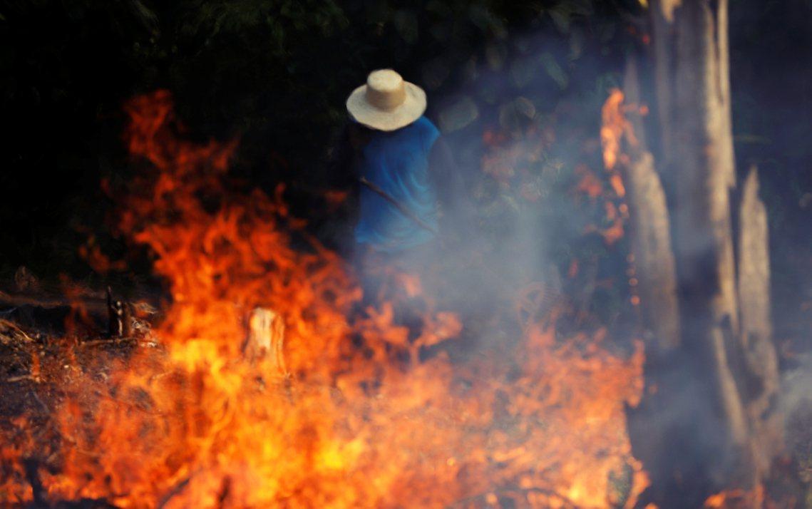 全球最大熱帶雨林——亞馬遜森林——正遭遇有紀錄以來,最頻繁的森林大火。 圖/路透...