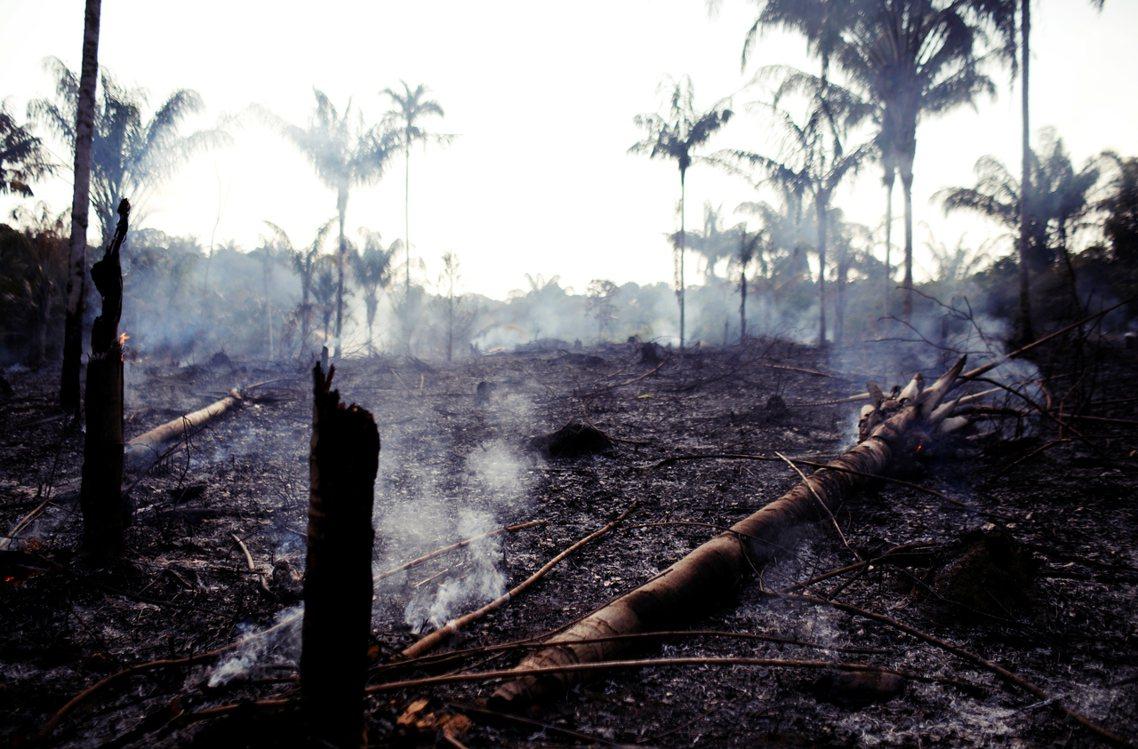 8月20日,《路透社》拍下亞馬遜森林在被木材業者與農夫焚燒森林後的景象。 圖/路...