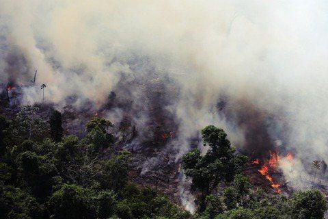 頻繁肆虐的森林大火不只讓鄰近的巴西亞馬遜州,在8月進入「緊急狀態」,更衝擊了千里...
