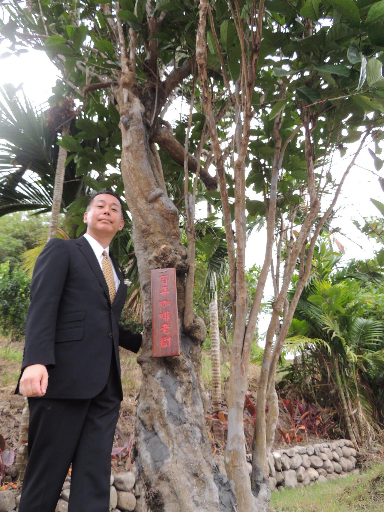 柴田‧裕在可能是已故爺爺種下的百年咖啡樹前留像。記者羅紹平/攝影