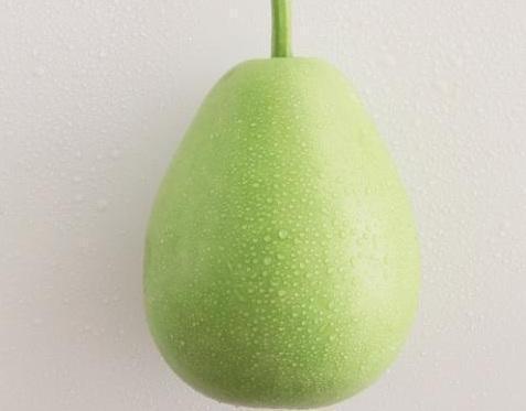 扁蒲熱量低,可作為減肥食材料理。 圖片提供/台灣好食材(來源:《餐桌上的蔬菜百科...