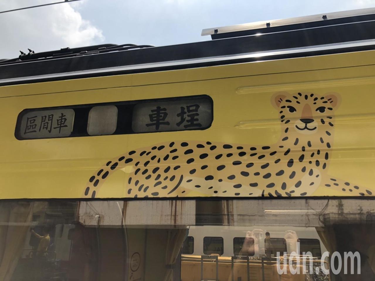 集集支線彩繪列車上的石虎圖案遭外界批評像花豹。記者曹悅華/攝影