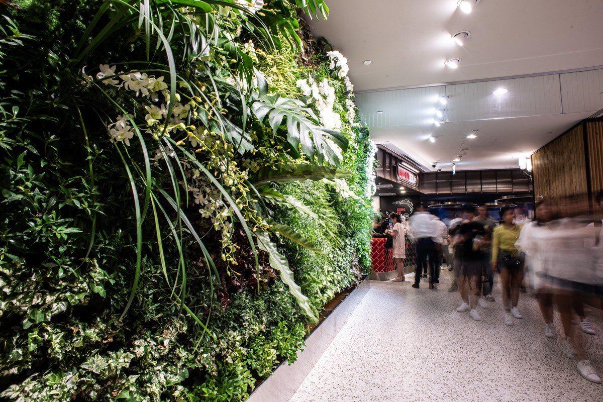 台北101購物中心美食街改裝新開幕,空間加入更多綠意元素。圖/台北101提供