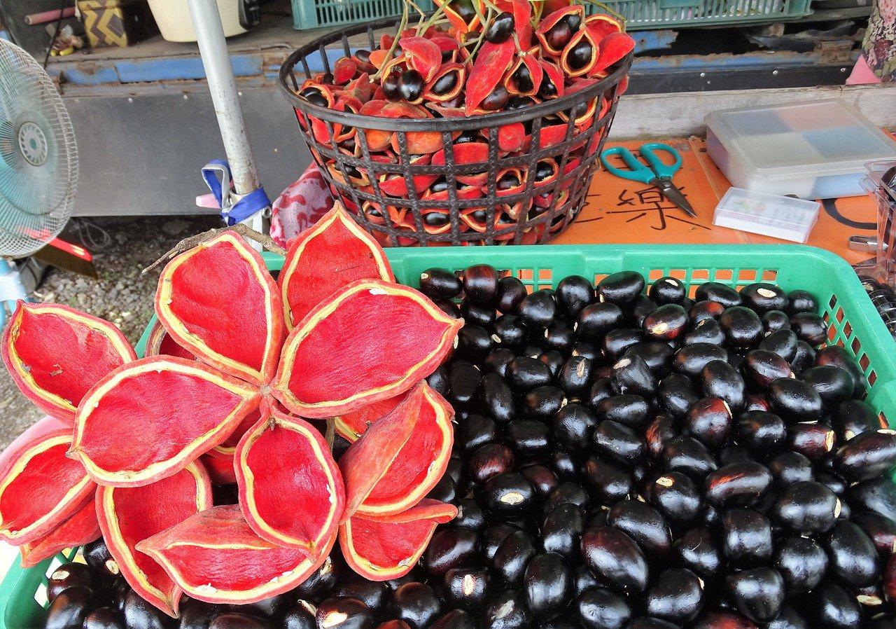 百果山下有攤子販售蘋婆,已經貼心去殼方便民眾買回家煮,或也有販賣煮熟的讓消費者直...