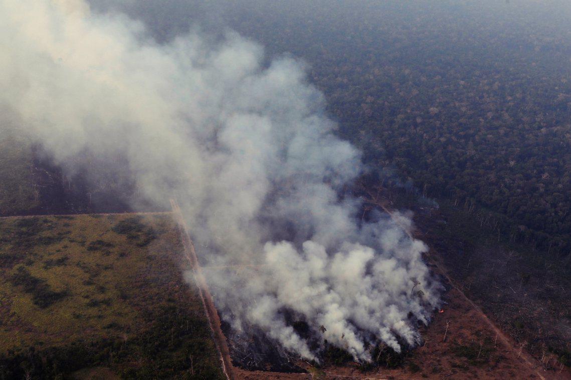 「說到亞馬遜著火的事,我個人是認為啦,也可能是那些NGO在縱火啊。為什麼?因為他...