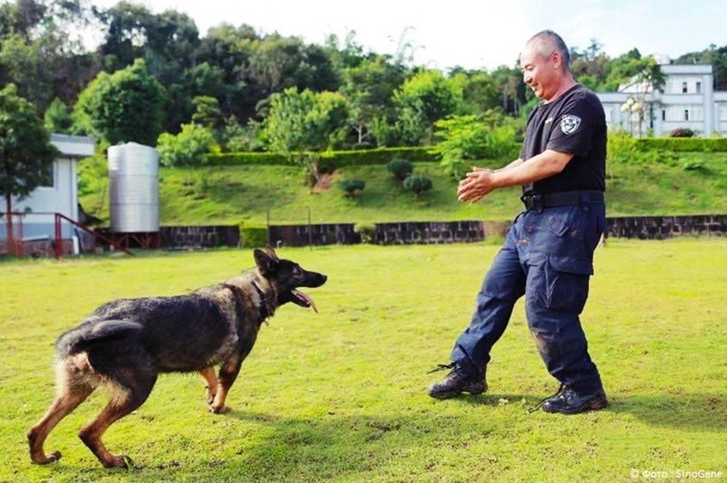 在中國公安部的研究計畫支持下,希諾谷公司在2018年底複製出中國第一隻複製警犬「...