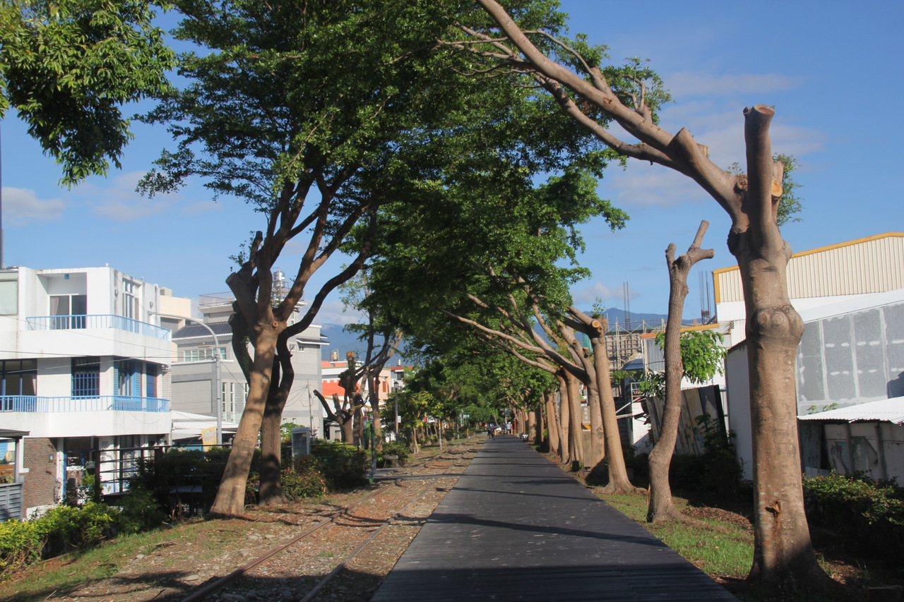 「山海鐵馬道」以台東舊站周遭為起點的都市綠廊,經由鐵馬道的串聯,沿伸至太平溪及台...