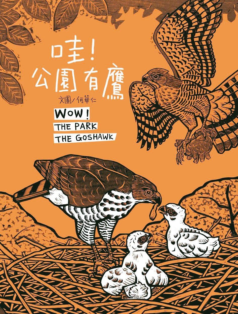 《哇!公園有鷹》作者/何華仁 青林國際出版/提供