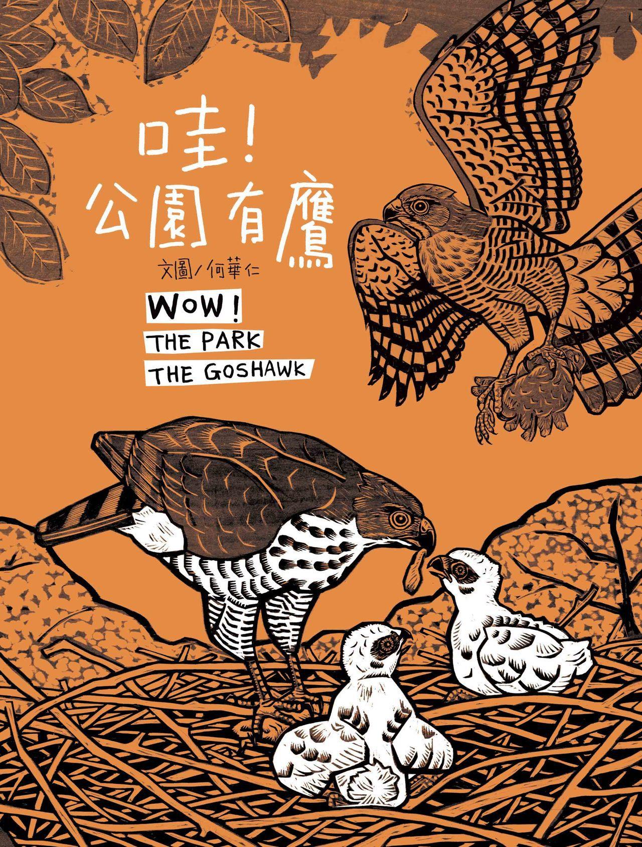 《哇!公園有鷹》。圖/青林國際出版提供
