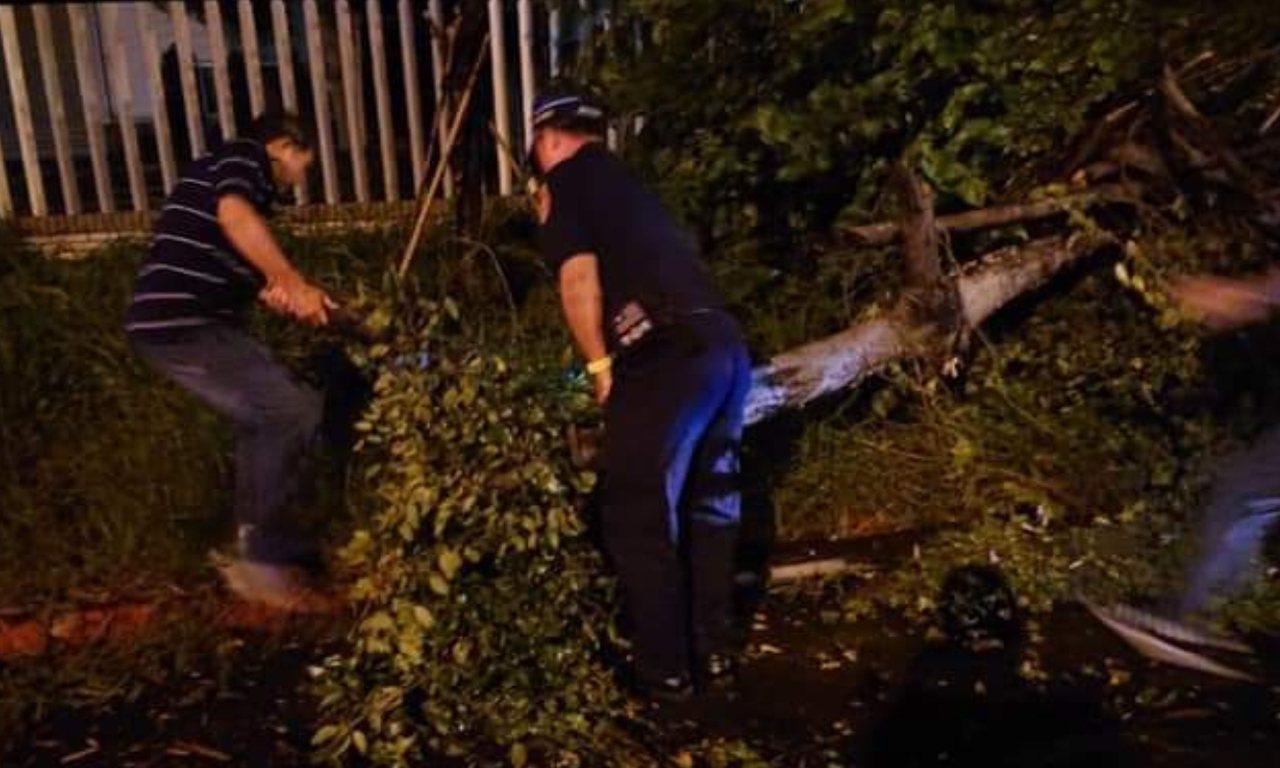 高雄市今晚刮起強陣風,岡山警分局陸續接獲路樹傾倒通報。記者賴郁薇/翻攝