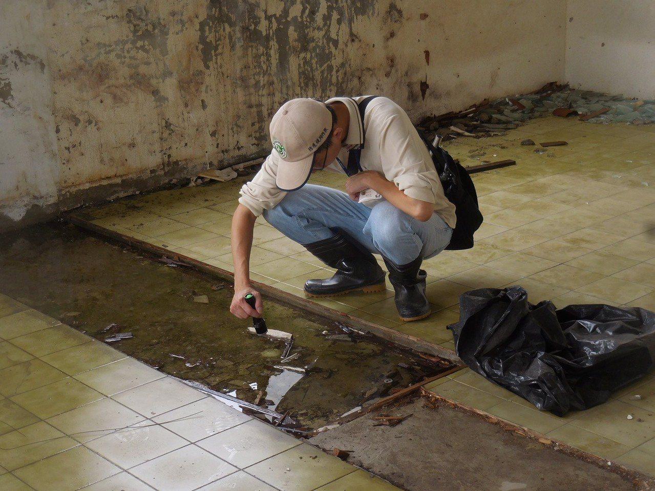 台南市衛生局人員前往東區大同里巡查是否有登革熱病媒蚊孳生源,並呼籲民眾在降雨後一...