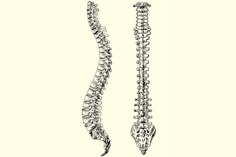 臨床上高達七成的慢性下背痛都與脊椎有關。如椎間盤突出、腰椎狹窄或腰椎滑脫、壓迫性...