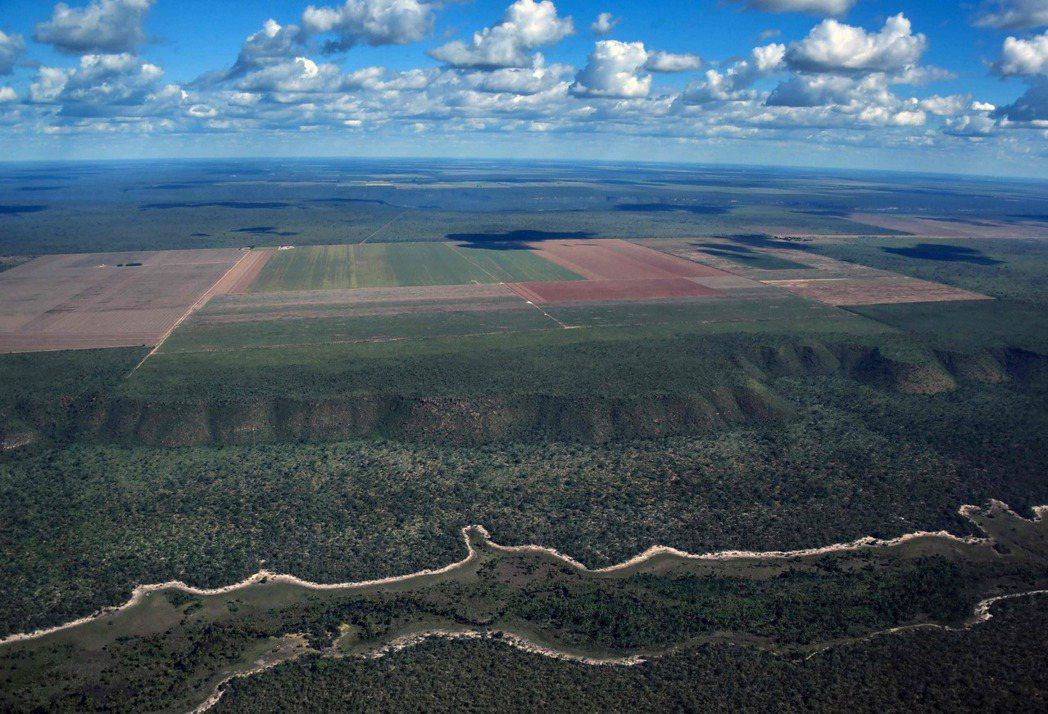 為了商業前景,人們開墾亞馬遜地區,用以種植農作物。圖為巴西巴伊亞州西部一處農田,...